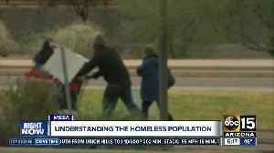 Volunteers working to count those experiencing homelessness [Video]
