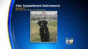 Fort Worth Fire Department K-9 Retiring [Video]