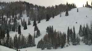 Search Crews Recover Body of Missing 26-Year-Old Utah Skier Killed in Avalanche [Video]