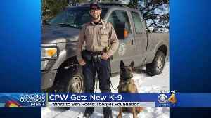 Colorado Parks & Wildlife Gets New K9 Officer-In-Training [Video]