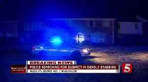 Woman fatally stabbed in Madison condo complex [Video]