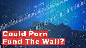 Arizona Lawmaker Proposes Porn Tax To Fund Border Wall [Video]