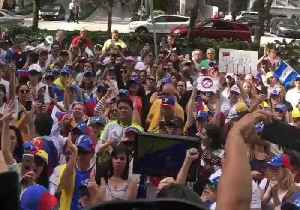 Venezuelans in Miami Jubilant as Juan Guaidó Declares Himself Interim President [Video]