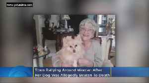 Community Steps Up To Help Woman Whose Dog Was Beaten To Death [Video]