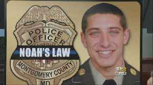Maryland Lawmakers Aim To End Loophole In Noah's Law For Convicted Drunk Drivers [Video]