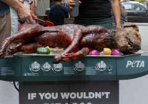 Animal Rights Activists Barbecue 'Dog' in Confronting Protest [Video]