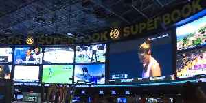 Vegas sportsbooks are adapting to increase in sports betting legalization [Video]