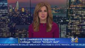 NYS Lawmakers Approve 'Dream Act' [Video]