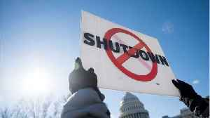 Flights Delayed As Government Shutdown Stretches Into 35th Day [Video]