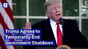 Trump Agrees to Temporarily End Government Shutdown [Video]