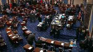 Two Separate Plans To End Government Shutdown Die On Senate Floor [Video]
