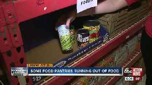 Tampa Bay Area food bank running dangerously low on canned goods [Video]