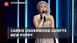Carrie Underwood Expands Her Family More With A Puppy [Video]