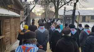 Survivors Lay Wreaths at Auschwitz on Holocaust Remembrance Day [Video]