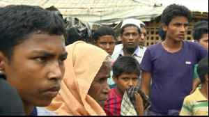 Rohingya crisis: UN warns against repatriation [Video]