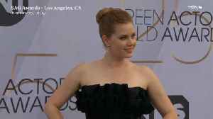Right Now: Amy Adams SAG Awards Red Carpet [Video]