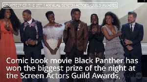 Brits snubbed as Black Panther takes top prize at Screen Actors Guild Awards [Video]