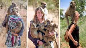 Stunning blonde conservationist becomes mum to dozens of orphaned baboons and monkeys [Video]