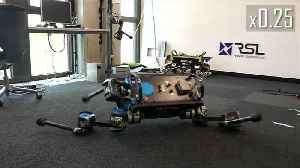 Robotic dog uses AI to learn new tricks [Video]