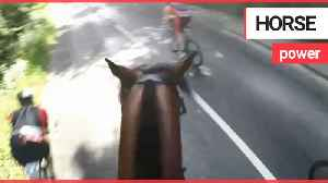 Cyclist lands himself hefty fine after high-speed collision while undertaking horse [Video]