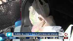 Should plastic bags and straws be banned from Florida businesses and stores? [Video]