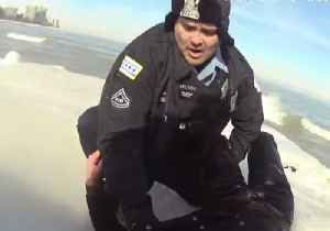 Man Rescued From Icy Lake Michigan After Jumping in to Save His Dog [Video]