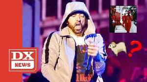 "Eminem Says Punchline About 'Sheep Banging' On Boogie's Song ""Rainy Days"" & The Internet Goes Crazy [Video]"