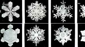 Why No Two Snowflakes Are Alike, According to Science [Video]