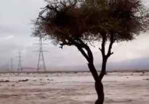 Heavy Rainfall Causes Fatal Floods in Saudi Arabia [Video]