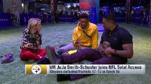 Pittsburgh Steelers wide receiver JuJu Smith-Schuster joins 'Total Access' to discuss teammate WR Antonio Brown ... with puppies [Video]