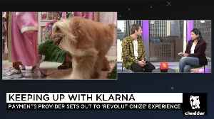 Klarna Courts U.S. Customers with Flashy Ads, New Shareholder Snoop [Video]