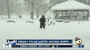 Deadly polar vortex moving north [Video]