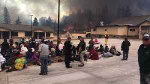 How Quick Thinking Saved Hundreds of Lives During Camp Fire [Video]