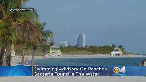 No Swim Advisory Issued For Three Miami-Dade Beaches [Video]