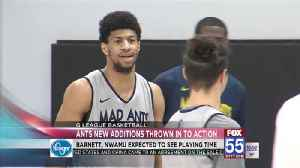 Mad Ants New Additions Thrown in to Action [Video]