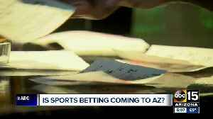 State lawmaker pushing to legalize sports betting in Arizona [Video]