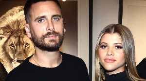 Sofia Richie HINTS Her & Scott Disick Are LIVING Together! [Video]
