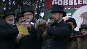 'Punxsutawney Phil' predicts winter blast will soon end [Video]