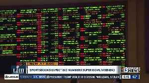 Sportsbooks expect big numbers for Super Bowl Weekend [Video]