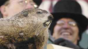 This Day in History: First Groundhog Day (Saturday, February 2nd) [Video]