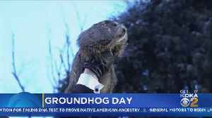 Will Groundhog Give Good News For Winter Sufferers? [Video]