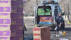 Ready? Girl Scout Cookies Go On Sale On Sunday [Video]