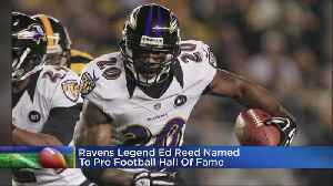 Ravens Legend Ed Reed Named To Pro Football Hall Of Fame [Video]