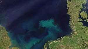 Colour of oceans to change by end of 21st century [Video]