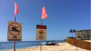 Hawaii's Hanalei Bay Closed After Shark Attack [Video]
