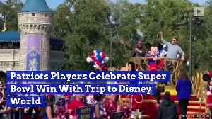 Patriots Players Celebrate Super Bowl Win With Trip to Disney World [Video]