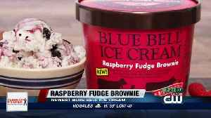 Blue Bell releases new ice cream flavor [Video]
