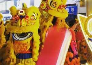 Lion Dancers Frolic During Hong Kong Lunar New Year Parade [Video]