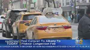 Taxi Caravan Protests Congestion Pricing [Video]