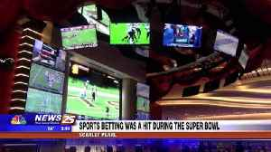 Sports betting was a hit during the Super Bowl [Video]